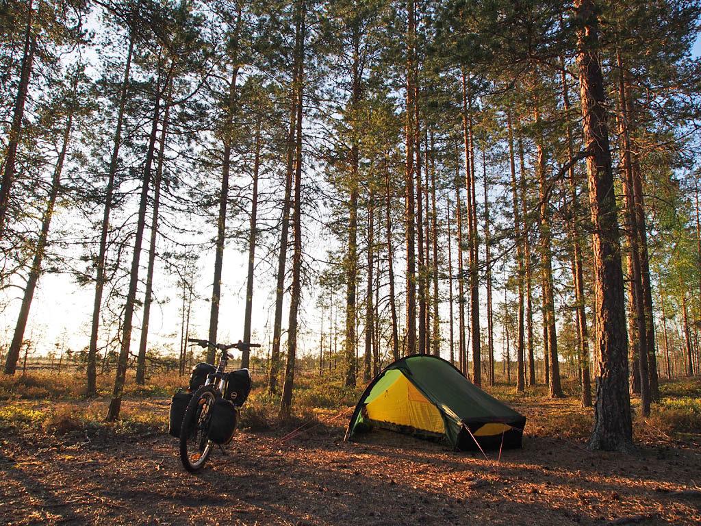 Leiri Salomaan nuotiopaikalla. Tasaisen kankaan laidassa on runsaasti hyviä telttapaikkoja.