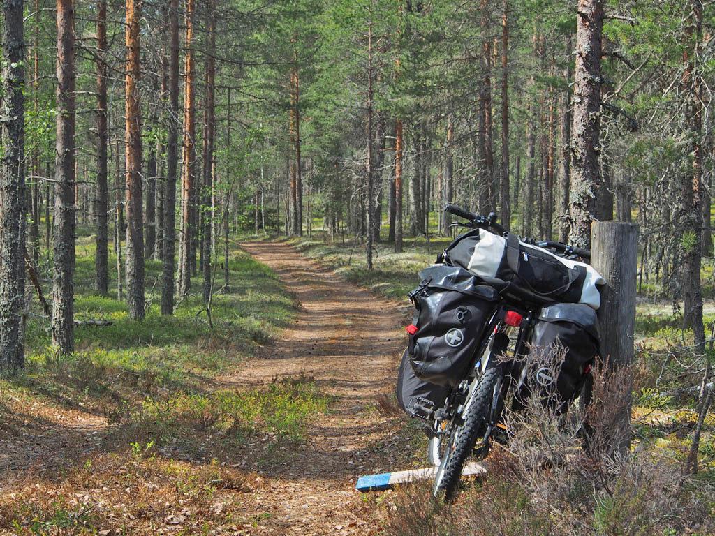 Lauhalasta Spitaalijärvelle vievää metsätietä Kiviharjun maisemissa. Oivallista pyöräretkimaastoa.
