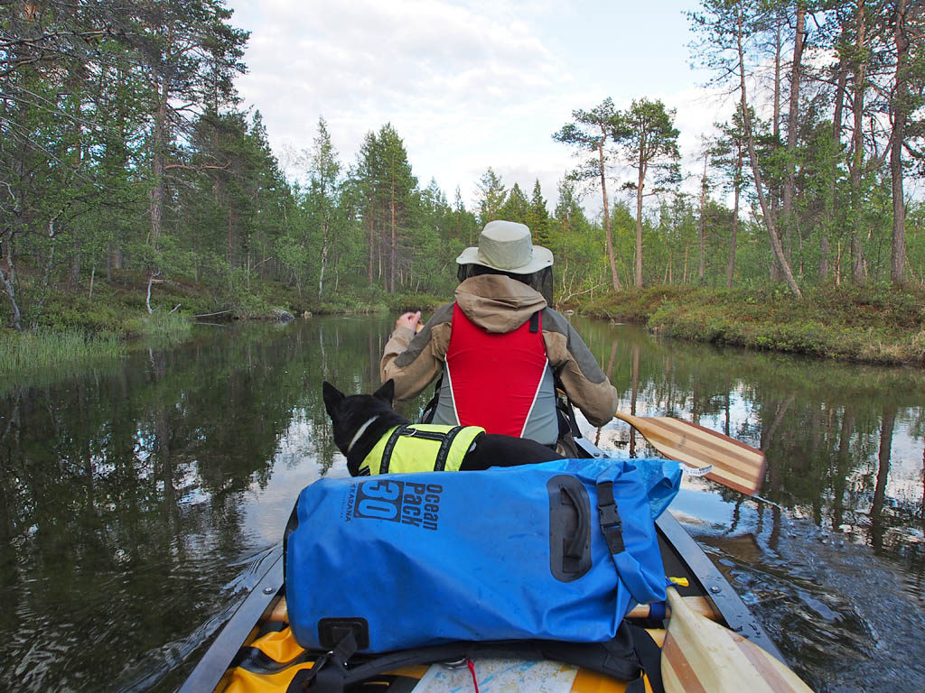 Kesäilta Sollumusjoella. Semekurtan tien varressa joki on rauhallisesti virtaava ja helposti melottava.